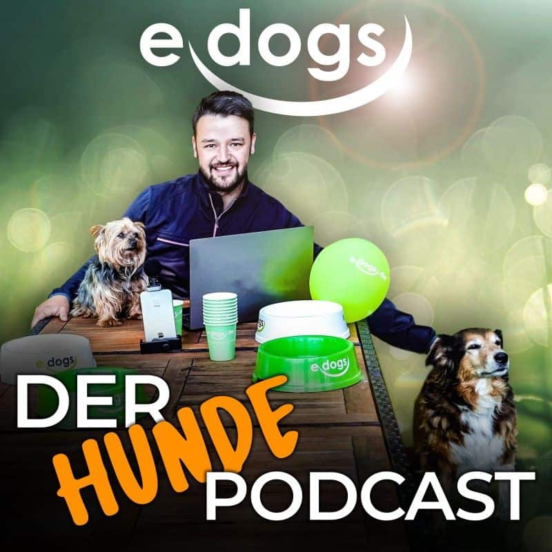 edogs der Hunde Podcast